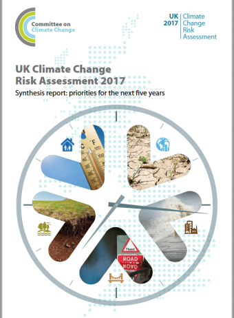 Green roofs are a win win – Climate Risk report