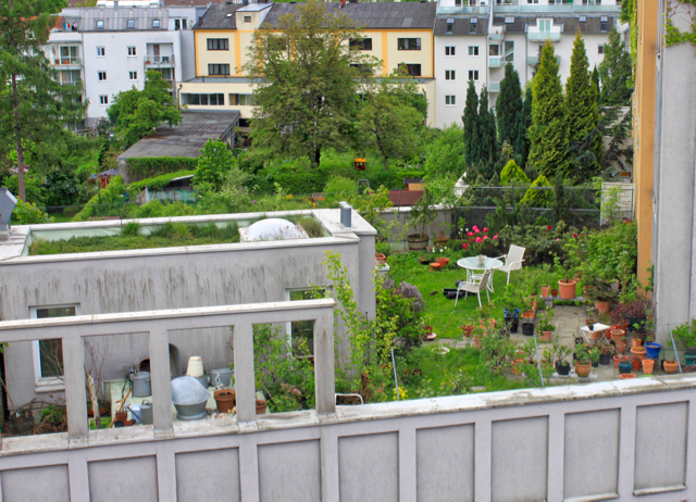 Intensive green roof - Linz Austria