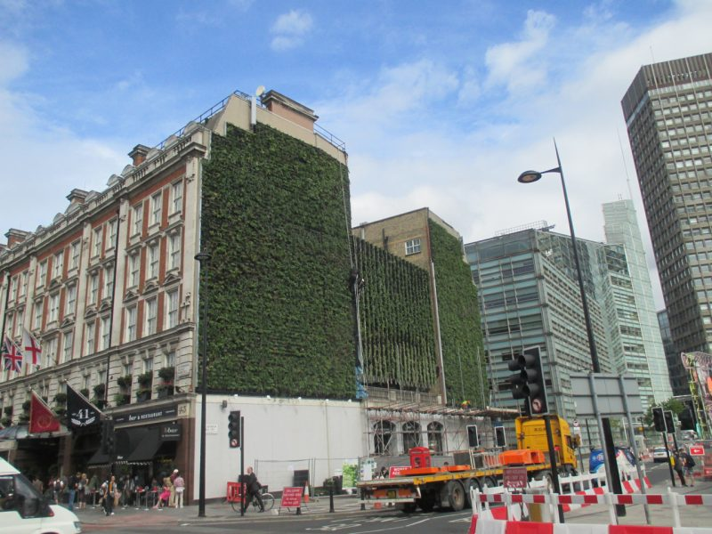 green walls - London