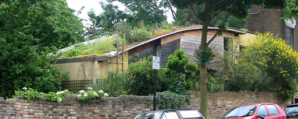 Mexican Hillside in London