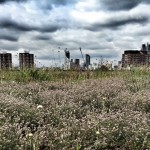 Dramatic Skyline over green roof in London