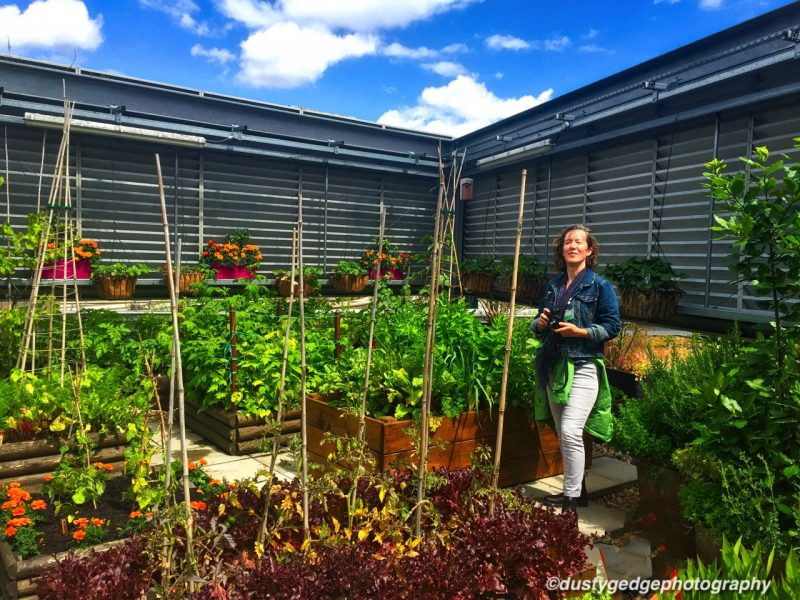 Food growing green infrastructure London