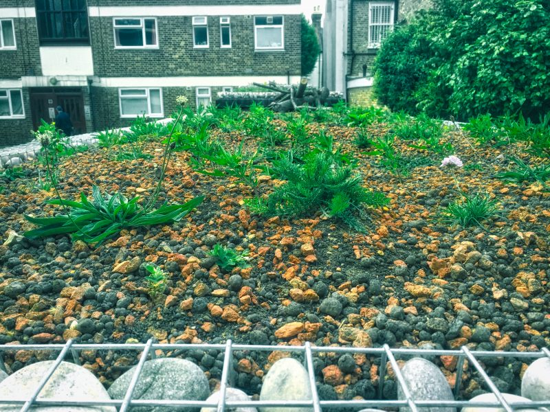 retrofitted green roofs London