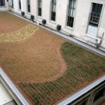 Green roof bylaws – from Argentina to San Francisco
