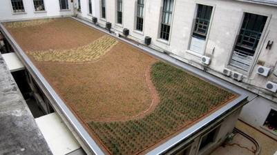 bylaw green roof Argentina