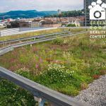 Nature based approach to green roofs – green roof beauty contest