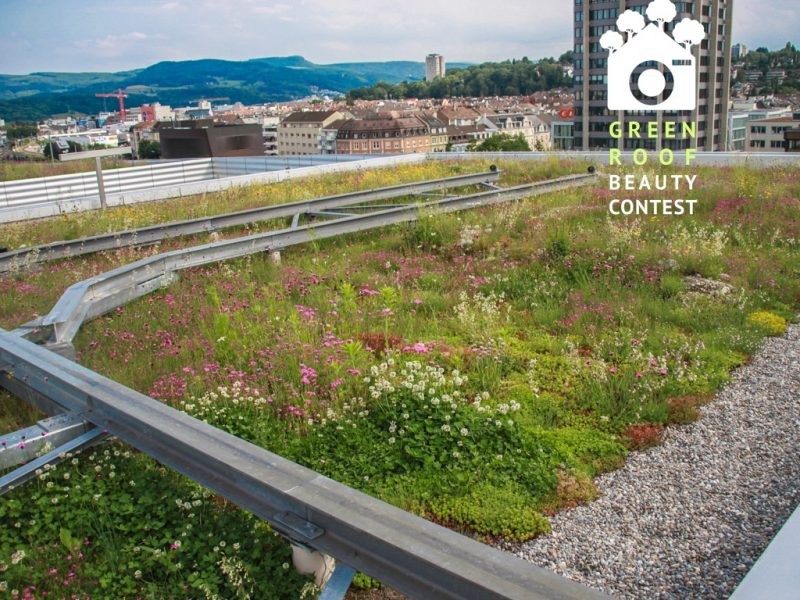 Nature based approach to green roofs