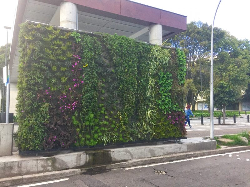 colombia - green walls