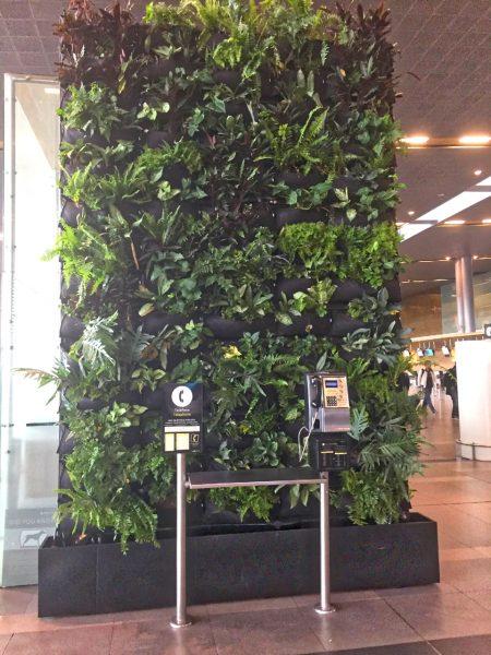 green wall - Bogota