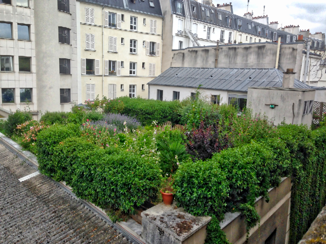 Intensive green roof France