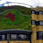 Bogotá could be one of the green wall capitals of the world