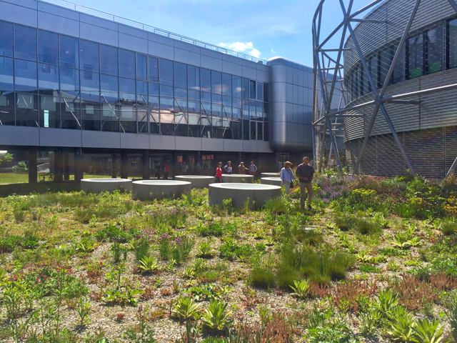 green savings fund - green roof Czech
