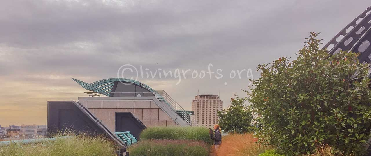 Intensive Green Roofs Uk