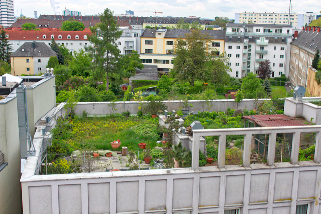 Linz - green roof- green infrastructure