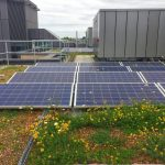 A green roof solar boost –  and a boost for nature too