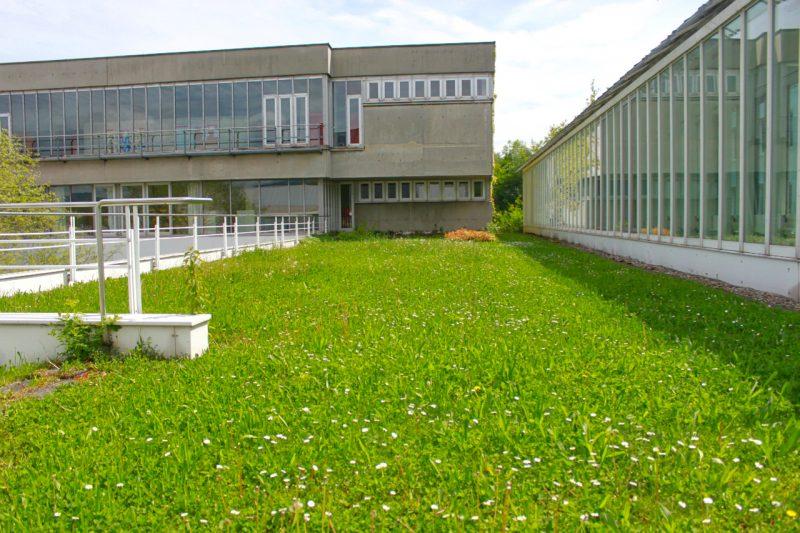 green roofs Linz Austrai