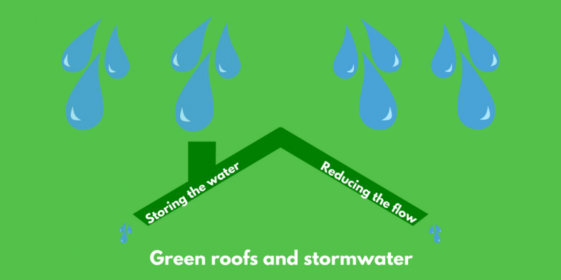 green roofs and stormwater