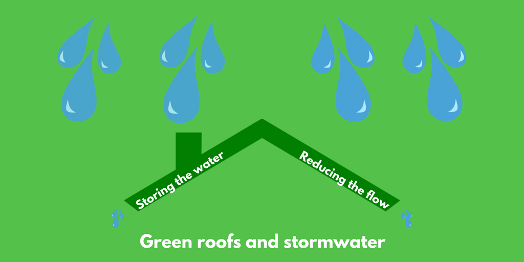 Green Roofs Amp Storm Water Run Off