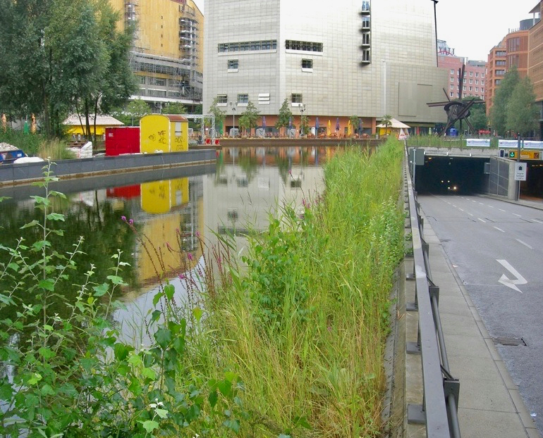 Green Roofs And Rainwater Harvesting