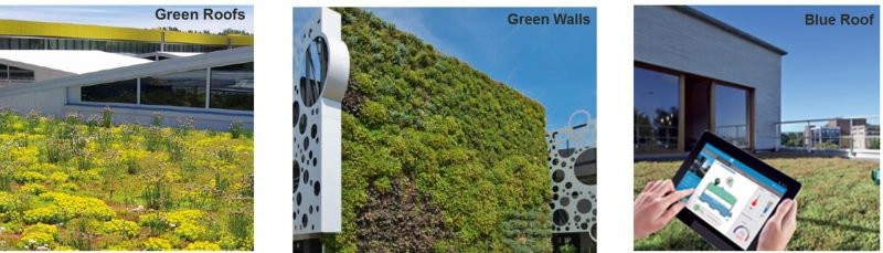 Vegetal i.D - urban vegetation