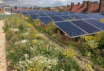 Green roof award winner 2018 – packing a sustainability punch