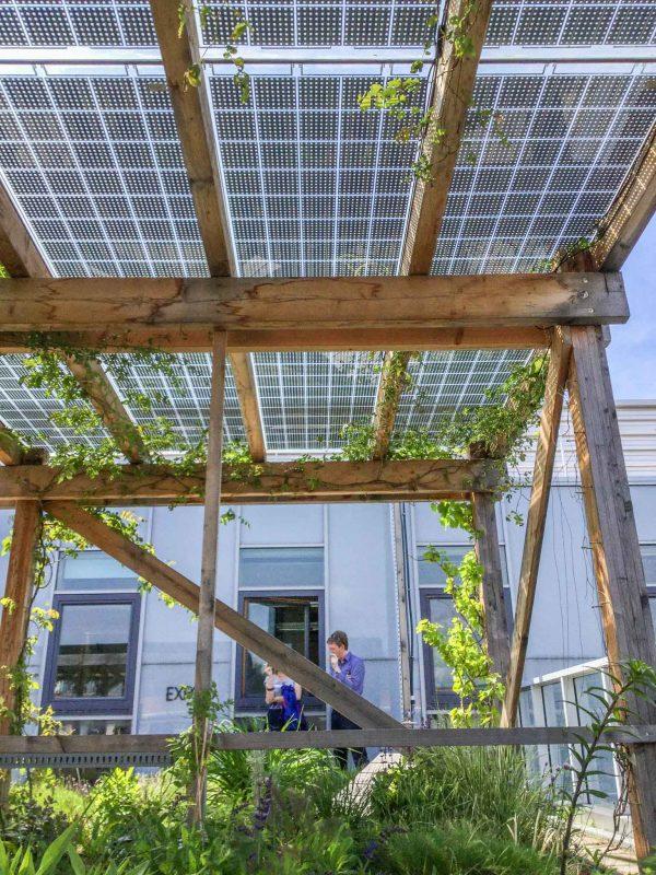 A Solar Intensive Green Roof Rooftop Garden Vienna Austria