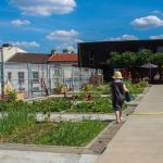 The impact of green roofs in Paris and the Île de France