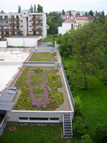 extensive green roof - Brno incentives