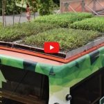 New a green roof bus acts as a research station too – Singapore