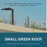 May is the time when small green roofs bloom