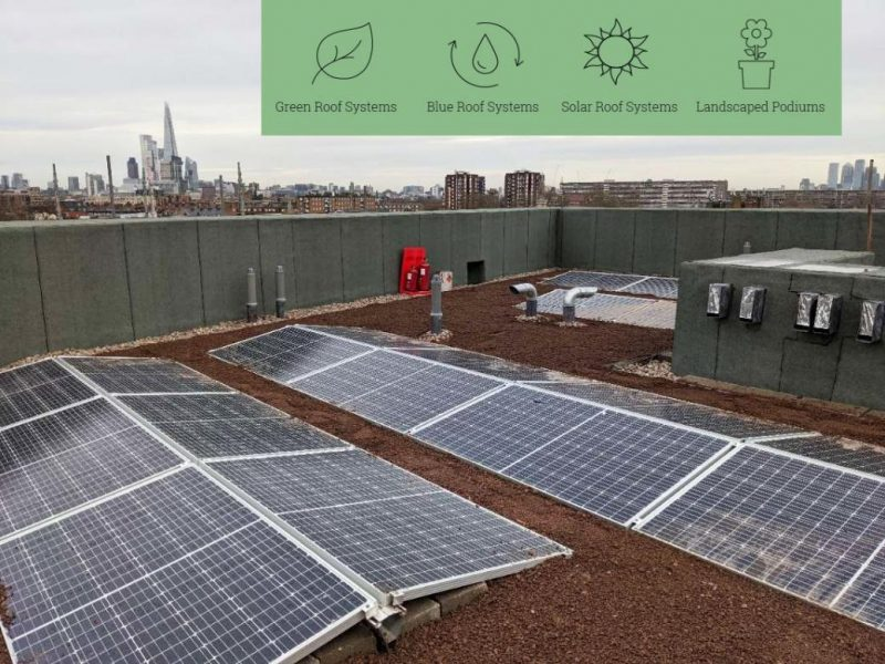 EGR (Eco Green Roofs) – Experts in Sustainable Roof Solutions